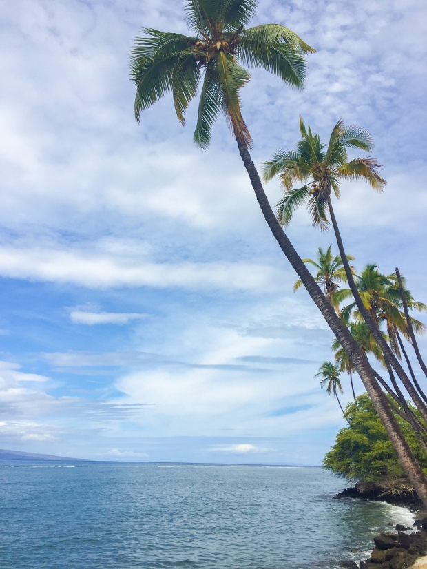 Hawaii_3